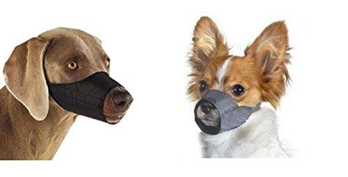 Best Dog Cages