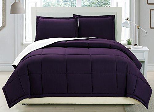 3 piece Luxury Dark Purple / White Reversible Goose Down Alternative Comforter set, Full / Queen with Corner Tab Duvet Insert (Reversible Comforter Full compare prices)
