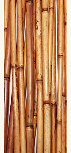 Green Floral Crafts Natural River Cane 4.5 Ft, Burnt Oak, Pack of 15