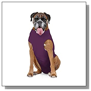The Original Soft E Collar Alternative, Protects Wounds, Aids Hot Spots and Provides Anti Anxiety Relief * Made In America* (Xtra Large Long, Plum)