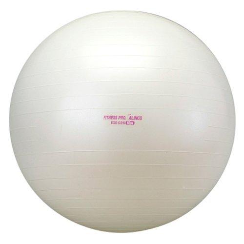 ALINCO(アルインコ) エクササイズボール 65cm EXG025 【文字色指定不可】