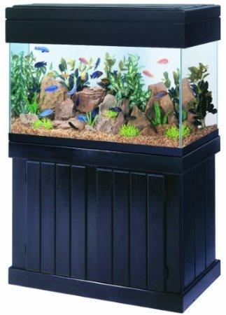 All Glass Aquarium AAG51136 Pine Cabinet, 36x18-Inch Animals Pet ...