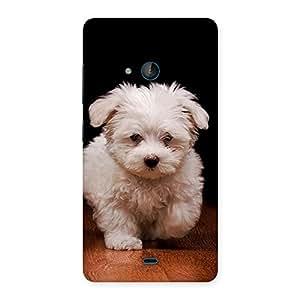 Ajay Enterprises Cute Walking Dog Back Case Cover for Lumia 540