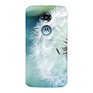 Gorgeous White Floral Back Case Cover for Moto X 2nd Gen