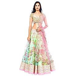 Bhagalpuri silk And Net multi Lehenga choli