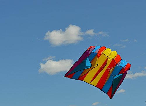 Parachute Frameless Parafoil 8 Cell Kite - 1