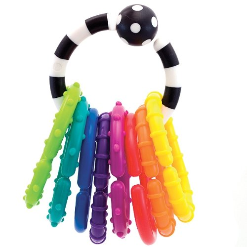 Sassy Ring O Links Rattle Developmental Toy