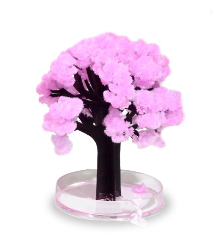 thumbs-up-magsak-magic-sakura