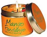 Mango Fandago Candle