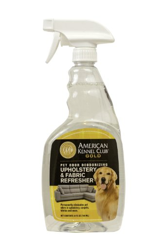 Best carpet cleaning solution for pet stains and odors