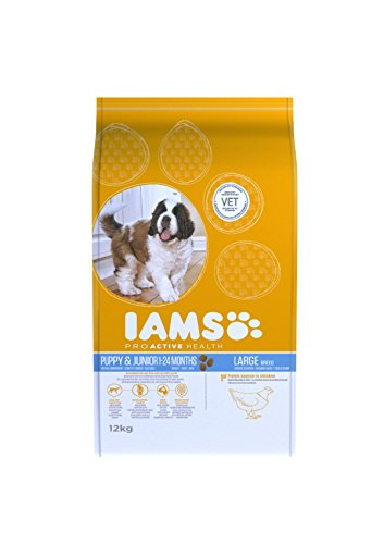 iams-puppy-food-junior-large-breed-chicken-12kg