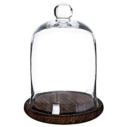 MyGift Clear Glass Jar, Cloche Dome Display Centerpiece with Brown Wood Base (Small Glass Base compare prices)