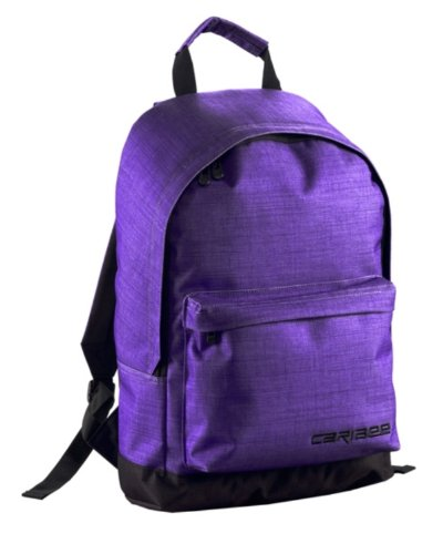 caribee-campus-day-pack-purple