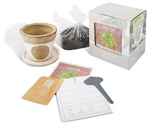Esschert Design USA 3200 Secrets du Potager Basil Herb Growing Set