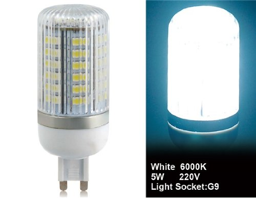 Wrui 3528-80L-220V 3.5W G9 80 X 3528Smd White Led Corn Bulb With Cover