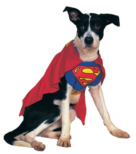 Superman Medium Pet Costume