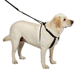 Guardian Gear Anti Pull Dog Harness Small