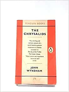 chrysalids q The chrysalids questions including what is the theme in the chrysalids by john wyndham and what is the setting of the story in the chrysalids.