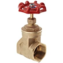 "Dixon BGV200 Brass Gate Valve, 2"" NPT Female"