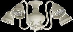 Quorum 2530-8067, 5-Light Decorative Fitter, Antique White