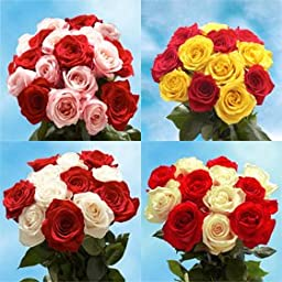 Fresh Cut Roses Delivery 50 Roses 25 Red Roses 25 One Color Only Roses Just Perfect