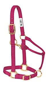 Weaver Leather Original Adjustable 3/4-Inch Suckling Chin and Throat Snap Halter, Raspberry