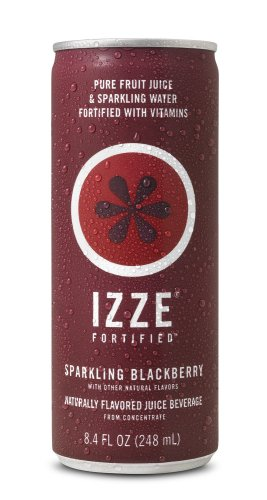 IZZE Fortified Sparkling Juice, Blackberry, 8.4-Ounce Cans (Pack of 24)
