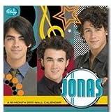 Jonas Brothers -- Jonas 2010 Wall Calendar