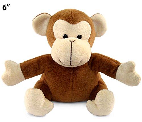 """Puzzled Monkey Puzzle, 6"""""""