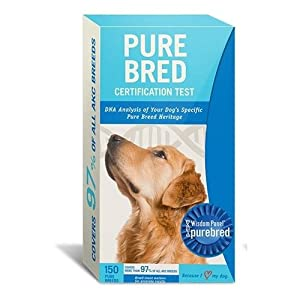 Purebred DNA Test Kit