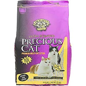 Precious Cat Dr. Elsey's Ultra Scented Scoopable Multi-Cat Cat Litter, 40 lbs.