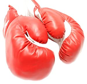 Buy New 1 Pair of Youth Red 6oz Boxing Gloves For Kids by TMS