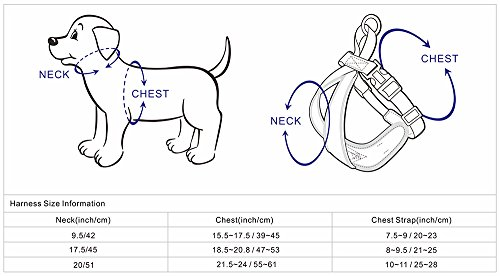 ph crane wiring diagram basic crane diagram