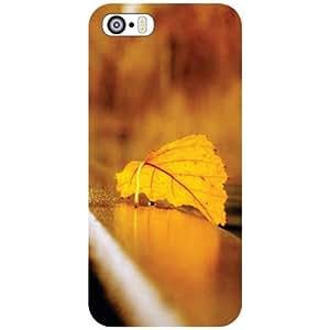 Apple iPhone 5S Back Cover - Printed Leaf Designer Cases
