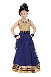 Trendy Girl's Designer Netted Blue Lehenga Choli