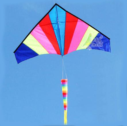 цены  Outdoor Multicolor Nylon Triangle Flying Kite With 100M Line