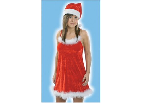 SEXY CHRISTMAS SANTA RED DRESS & HAT LADIES XMAS COSTUME