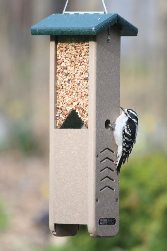 Birds Choice Woodpecker Feeder with Green Roof