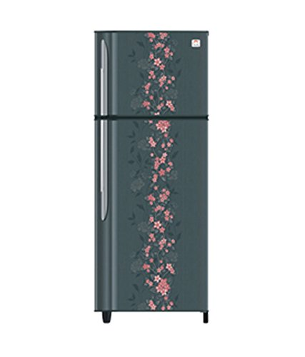 Godrej RT EON 260 PS 3.3 260 Litres 3S Double Door Refrigerator (Spring)