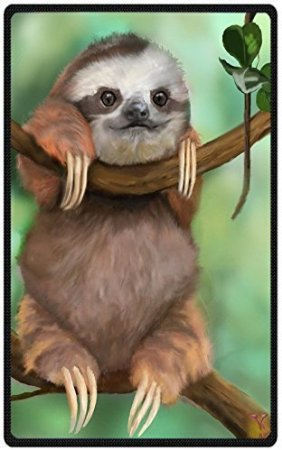 49-x-80-blanket-comfort-warmth-soft-cozy-air-conditioning-easy-care-machine-wash-funny-sloth