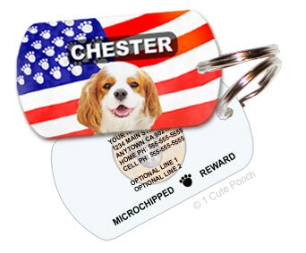 Patriotic Dog Personalized Pet ID Tag