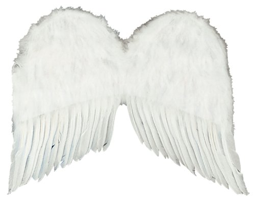 Forum Novelties Women's 22-Inch Feather Costume Wings