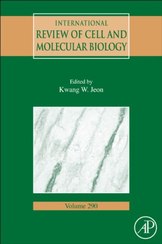 International Review Of Cell And Molecular Biology: 290 (International Review Of Cell & Molecular Biology)