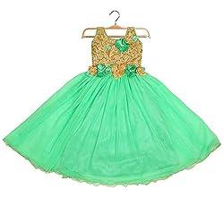 Aarika Girl's Self Design Net Fabric Party Wear Gown