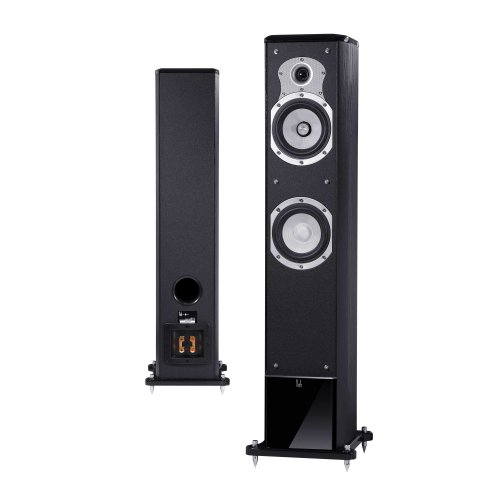 Roth Audio OLi30 Floor Stand Speaker Black Finish (Set of 2)