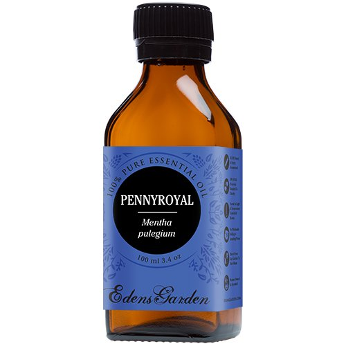 Pennyroyal 100% Pure Therapeutic Grade Essential Oil by Edens Garden- 100 ml