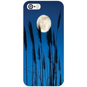 Apple iPhone 5S Back Cover - Tree Designer Cases
