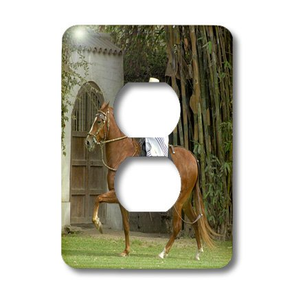 Lsp_86983_6 Danita Delimont - Peru - Peru, Lima, Horse Ranch, Chacra Tres Canas - Sa17 Cmi0334 - Cindy Miller Hopkins - Light Switch Covers - 2 Plug Outlet Cover