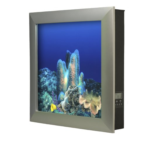 Top 5 Wall Mounted Fish Tanks Aquariums