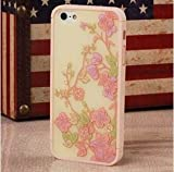 Disney Travel Series Hot Selling Fashional Hard Back Case iPhone 5S/5 (F)